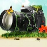 旅游摄影一族